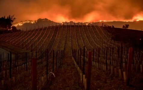 Napa fires cause havoc in Northern California