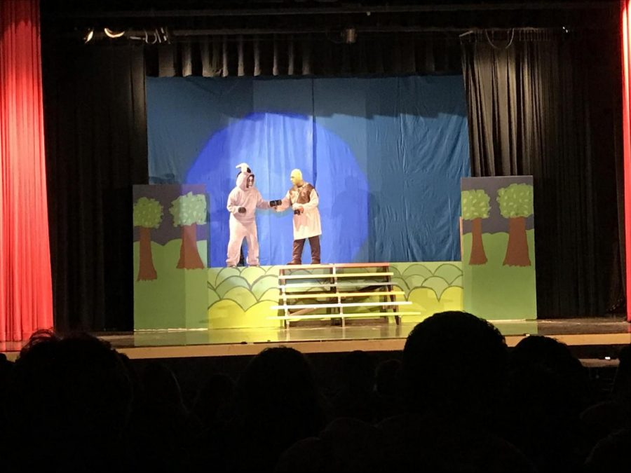 Colton High School's Shrek the Musical is a success