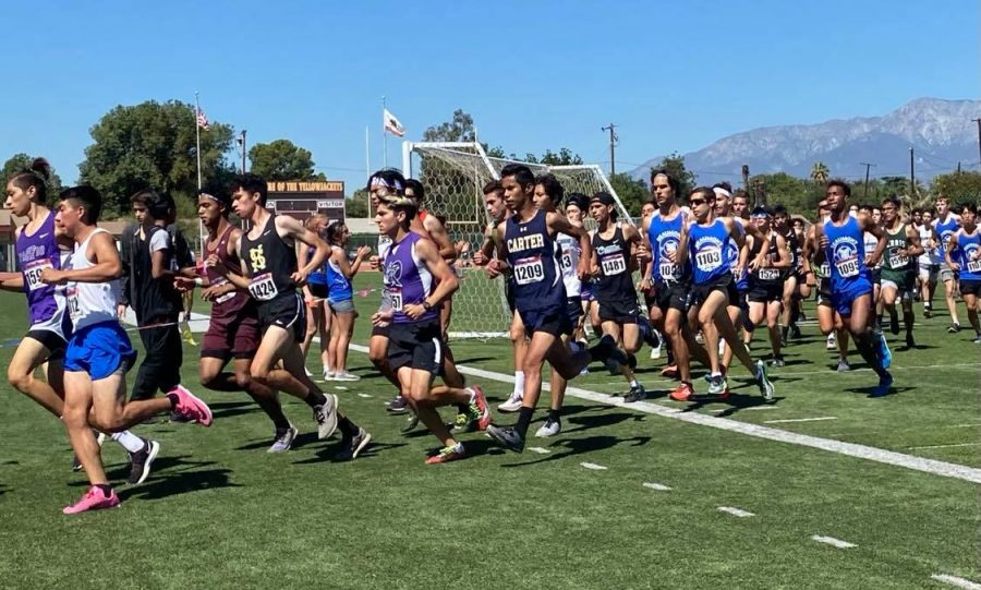 The senior boys take off to begin their race at the 52rd Colton High School Swarm Invitational.