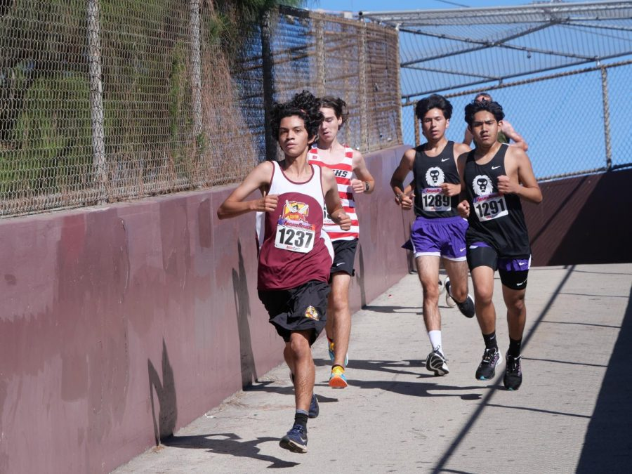 Sophomore stand out Juan Barron comes down Yellowjacket bridge en route to a time of 19:19.5 at the Swarm Invitational.